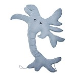 "Giant Plush Microbe Toy ""Brain Cell"""