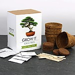 Grow It: Bonsai Trees