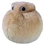 "Plush Microbe Toy ""Fat Cell"""