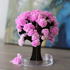 """Árbol Mágico que Florece """"Sakura"""""""