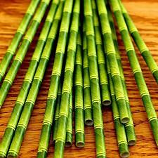 """Pajitas de Papel """"Bamboo"""" Pequeñas"""