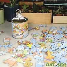 Worl Map Magnetic Puzzle
