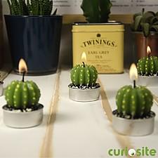 Velas de Té Cactus
