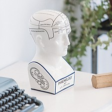 Mind Keeper Phrenology Bust
