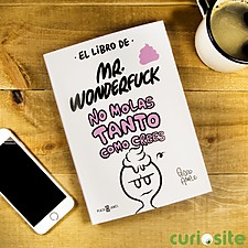 El libro de Mr. Wonderfuck