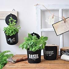 Kit de Autocultivo Hanging Herb Pots