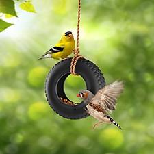 Comedero para Pájaros Swing Time