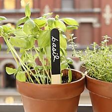 Etiquetas para Plantas Reusables