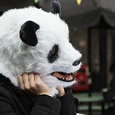 Máscara de Oso Panda con Pelo