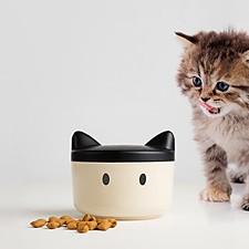 Comedero para Gatos Personalizable