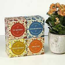 Kits de autocultivo de flores con mensaje