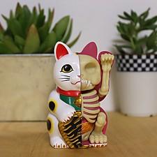 Modelo anatómico de gato de la suerte