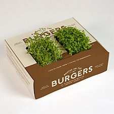 Kits de cultivo de brotes para hamburguesas, tacos o sushi