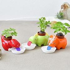Macetas de cultivo con autorriego en forma de dinosaurios