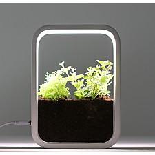 Jardín interior con lámpara de cultivo LED