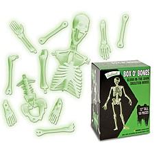 Esqueleto para Montar que Brilla en la Oscuridad