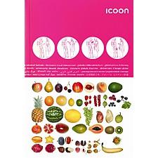 Diccionario Visual 'ICOON'