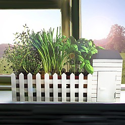 Mini huerto de interior para cultivar plantas aromáticas