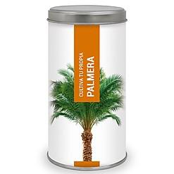 Kit para cultivar tu propio árbol