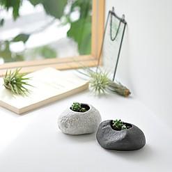 Kits de cultivo en macetita con forma de piedra