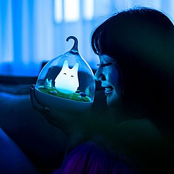 Luz de noche LED con Totoro luminoso de colores