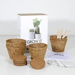 Kit de cultivo para plantar cactus