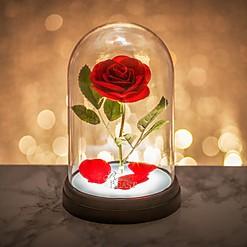 Lámpara con rosa encantada de La bella y la bestia