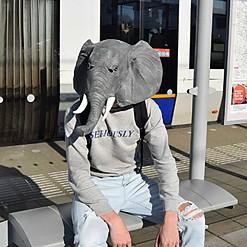 Máscara de cabeza de elefante