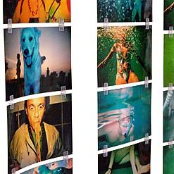 Clips para hacer murales con fotos