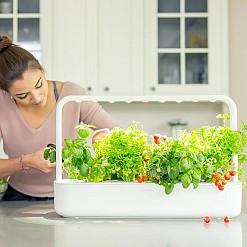 Smart Garden 9, el jardín inteligente
