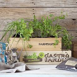 Kit de cultivo ecológico FARMTASTICO aromáticas del Mediterráneo.