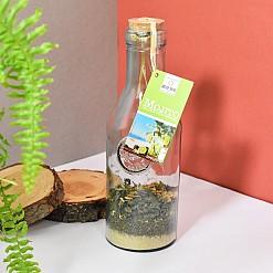 Botella de cristal con mezcla de Mojito