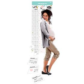 Calendario ¡Bebé en Camino!