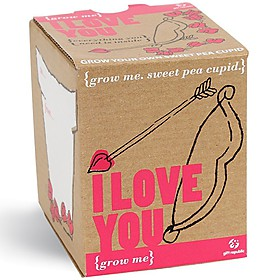 Kit para Plantar Guisantes de Olor Cupido