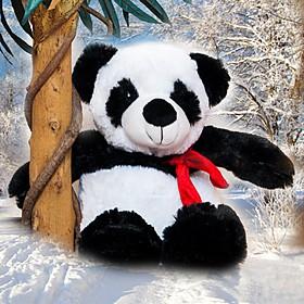 Calentador Oso Panda