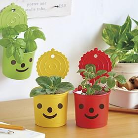Kit de Autocultivo Smile & Smile