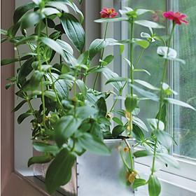 Kit de Autocultivo de Flores Blooming Garden