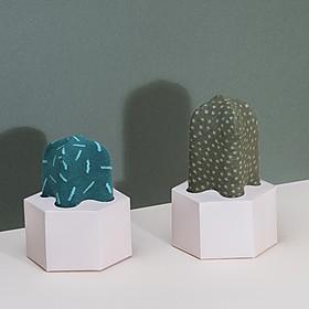 Calcetines Cactus