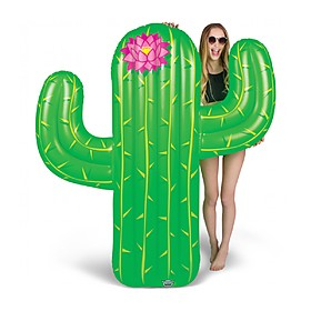 Flotador Gigante Cactus