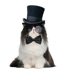 Corbata de Pajarita para Gatos