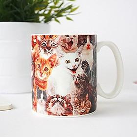 Taza Loca de los Gatos