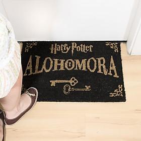 Felpudo Original Harry Potter Alohomora