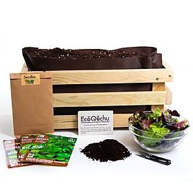 Kit de Cultivo de Ensaladas Gourmet