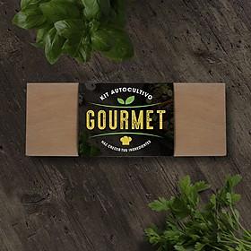 Kits de cultivo de hierbas aromáticas y plantas para gourmets
