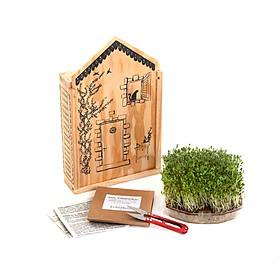 Casita de madera con mini huerto de brotes