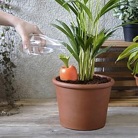 Sistema de autorriego con forma de zanahoria