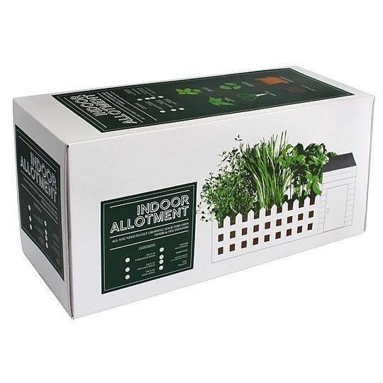 Incluye semillas de cilantro, albahaca y orégano