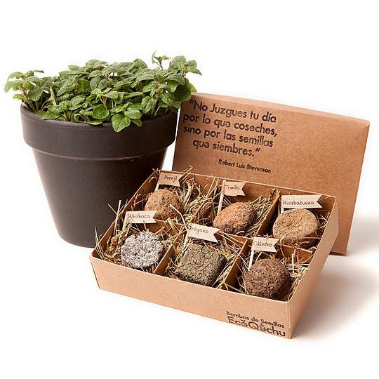 Cajas con seis bombas de semillas de aromáticas