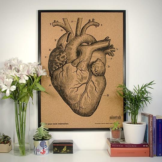 Ilustrado con un corazón anatómico de 1872