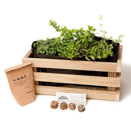 El kit de cultivo de aromáticas en una jardinera